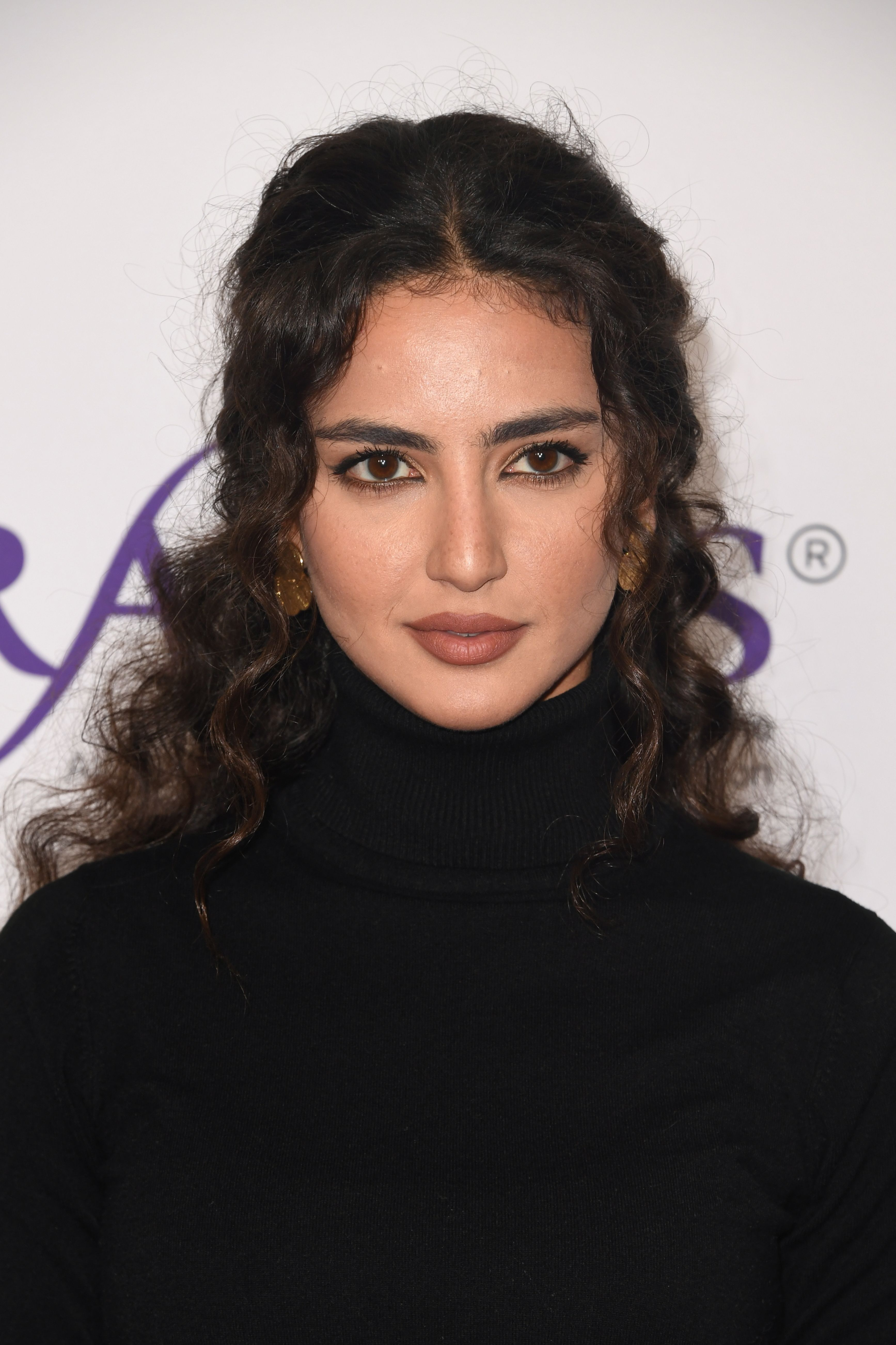 Medalion Rahimi The Actress Behind Ncis Los Angeles Fatima