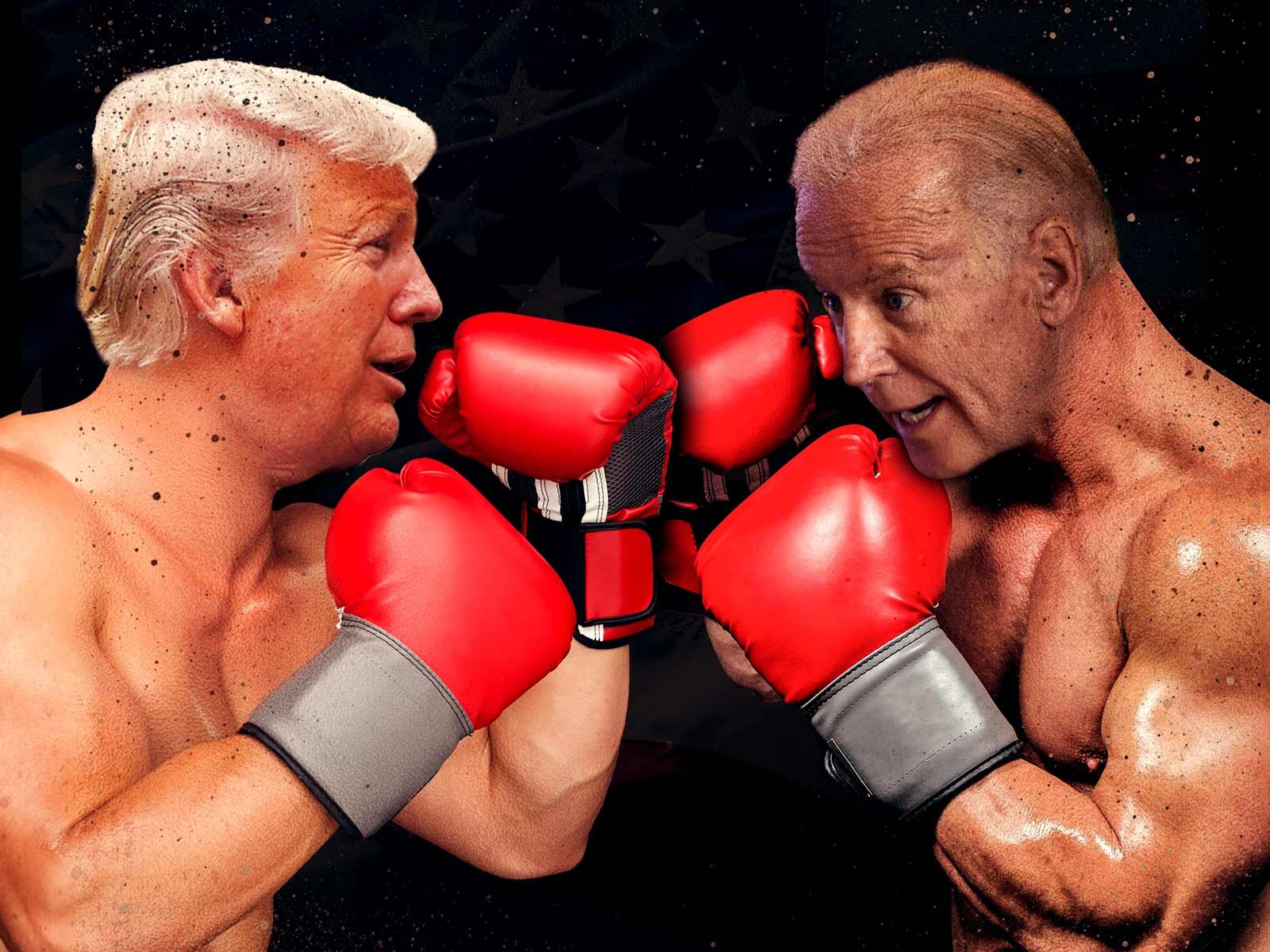 Donald Trump Says Joe Biden Would Go Down Fast And Hard In A Fight With Potus