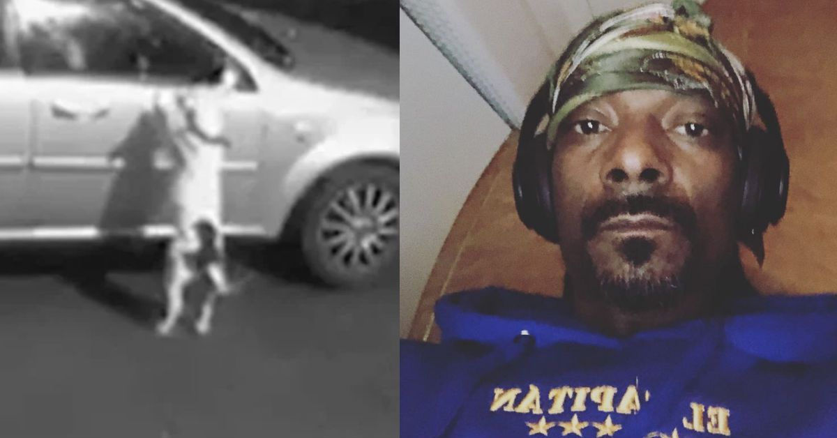 Snoop Dogg Offers To Re-Home Snoop The Dog After