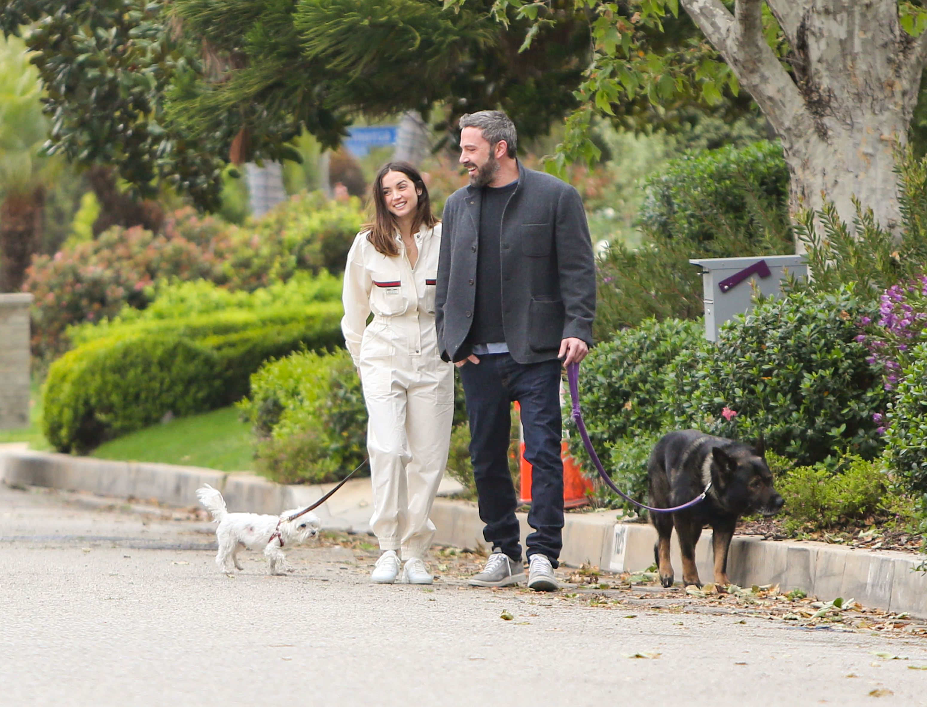 Ana de Armas and Ben Affleck walking their dogs together in LA.