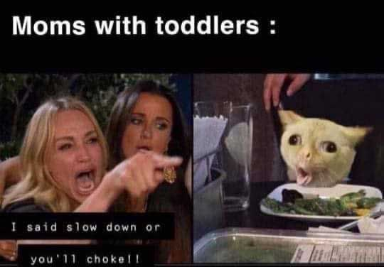 15 Of The Most Savage Woman Yelling At Cat Memes