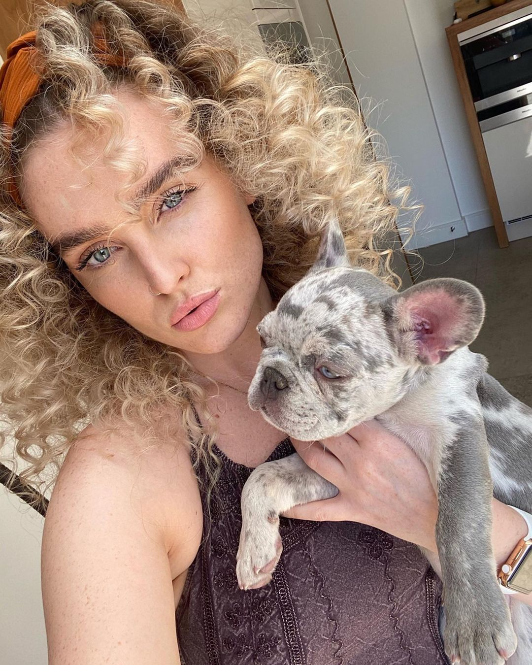 Perrie Edwards holds her gray French Bulldog.