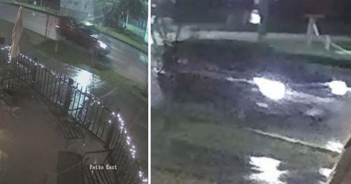 Person Asks Internet To Help Identify Car That Hit Family