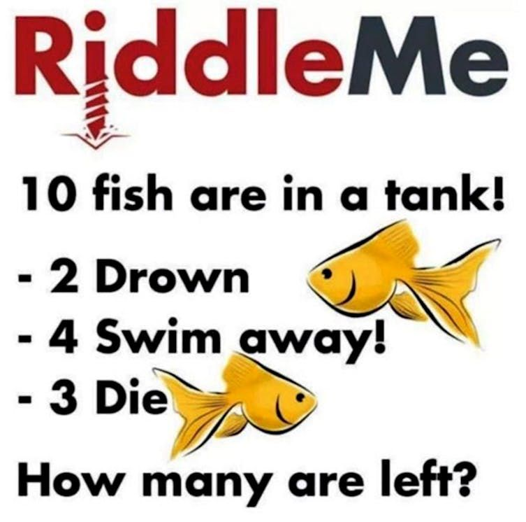 12 Impossible Riddles That Will Confuse Your Brain