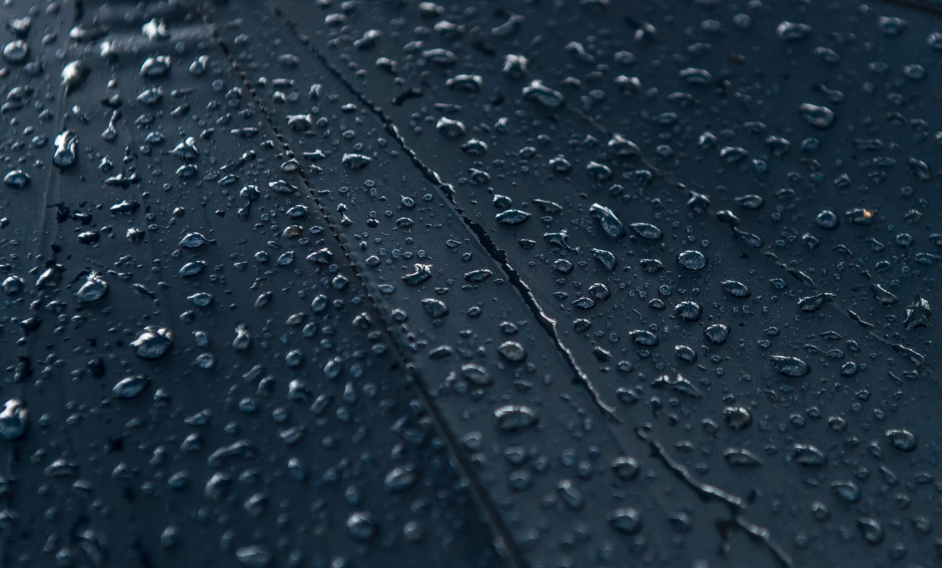 Raindrops on a surface.