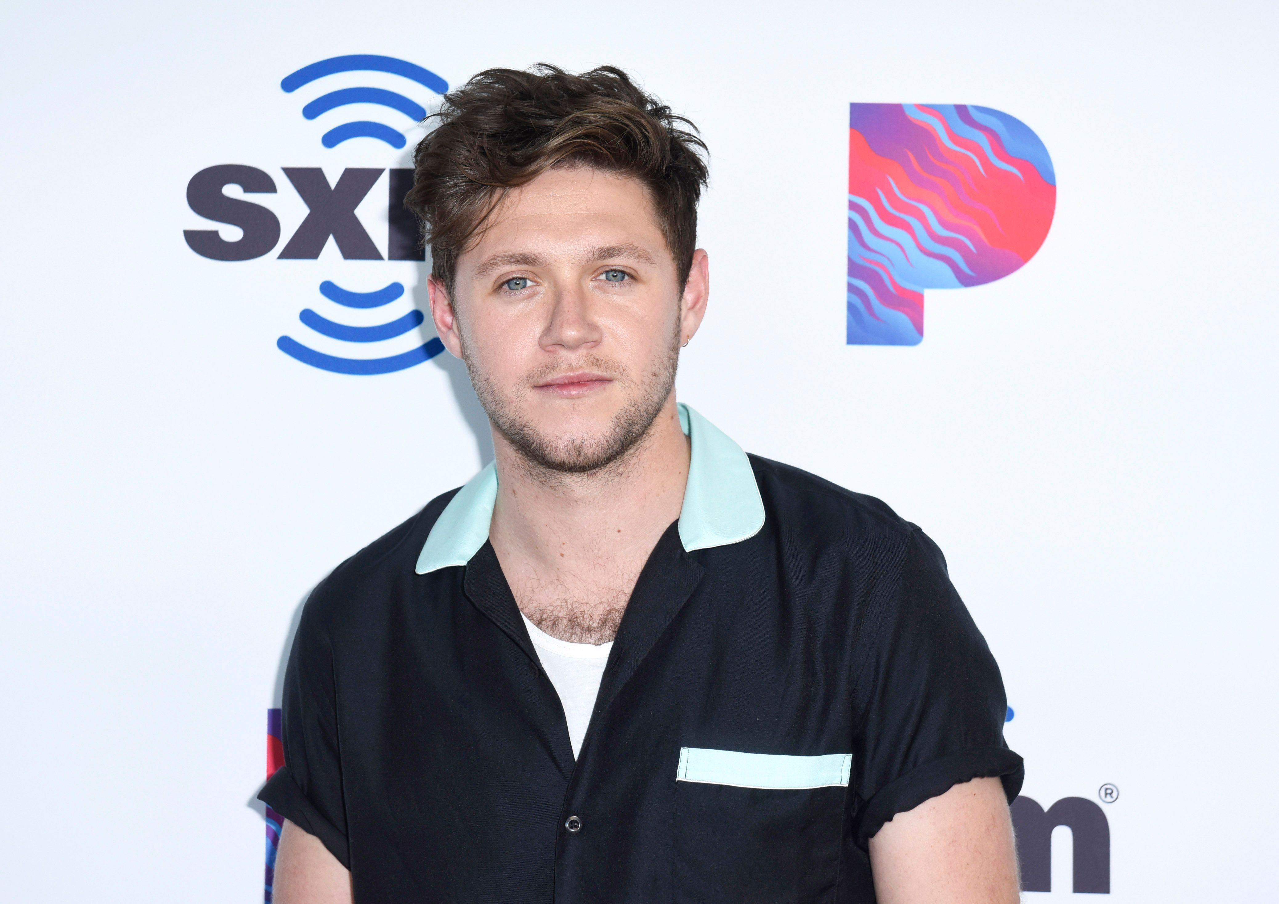 Niall Horan posing at an event.