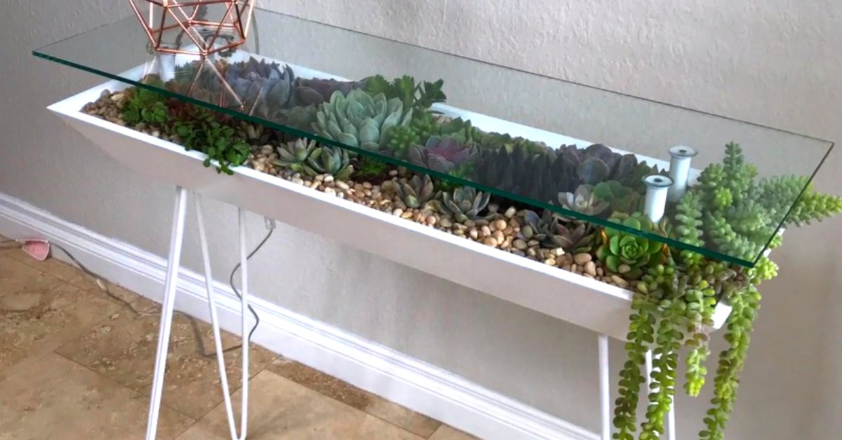 People Are Turning Glass Tables Into Giant Succulent Gardens