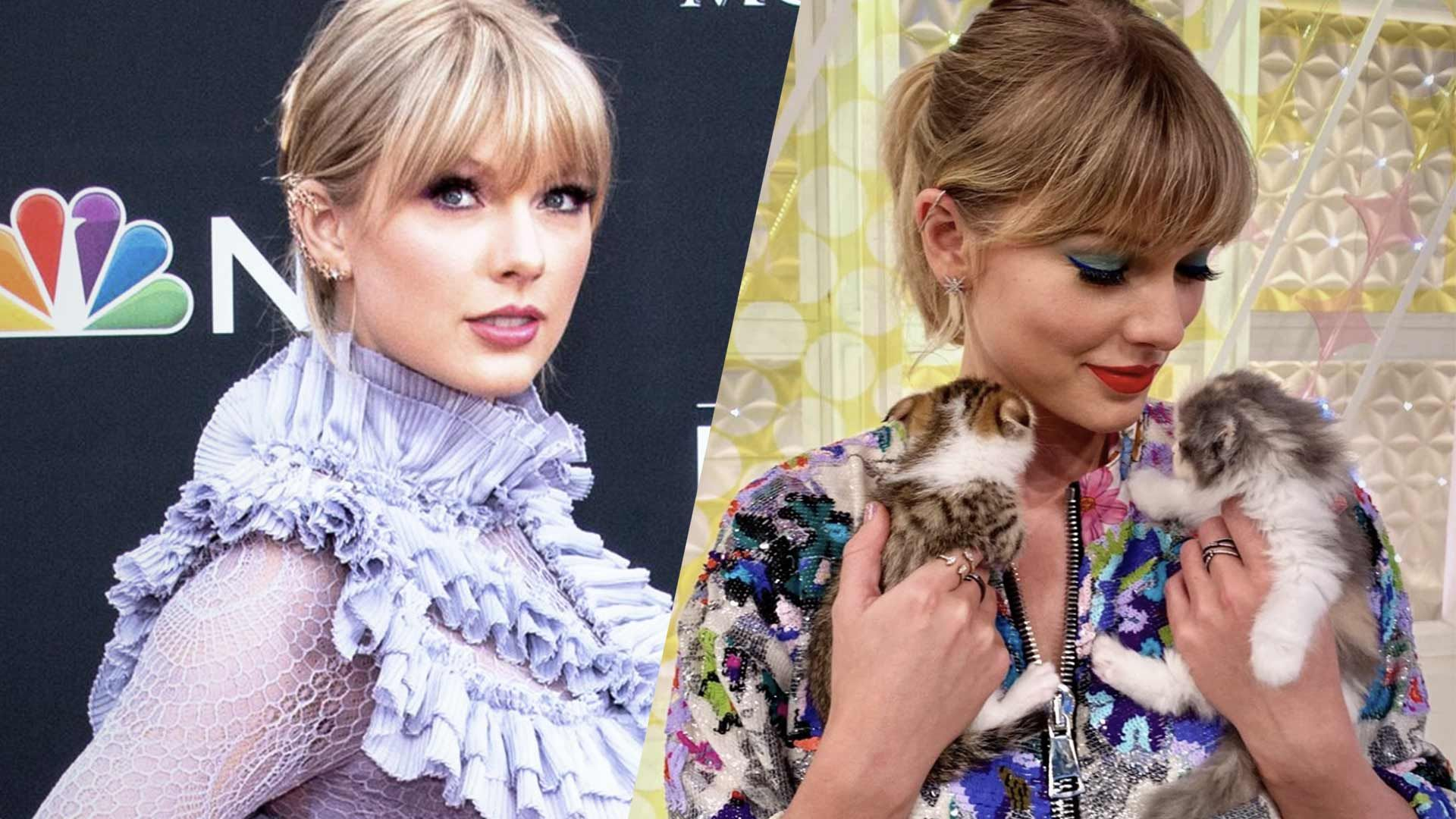 Admirable Taylor Swift Rings In 30Th Birthday With Cake Full Of Cats Funny Birthday Cards Online Inifodamsfinfo