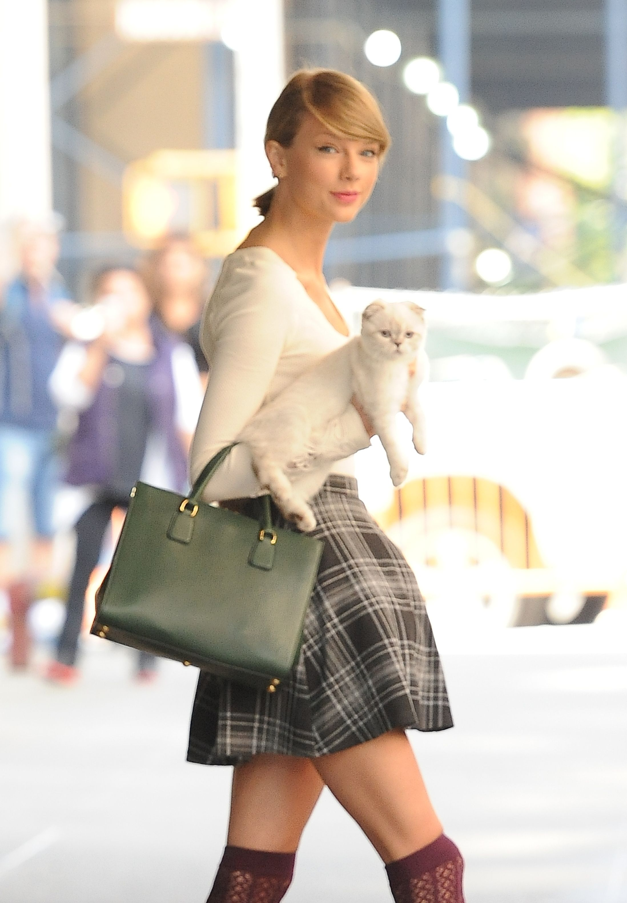 Taylor Swift and her cat named Olivia Benson