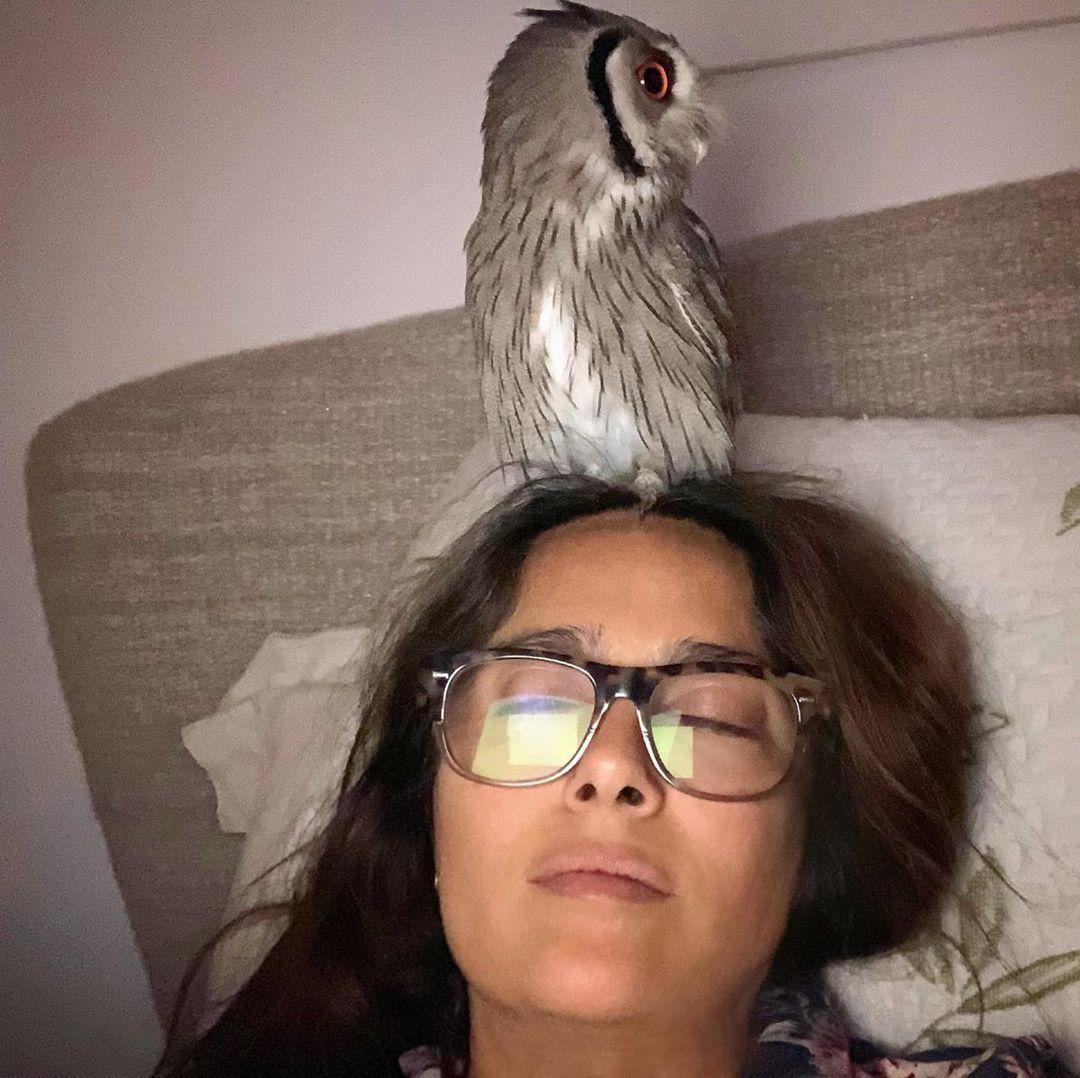 Salma Hayek with her owl
