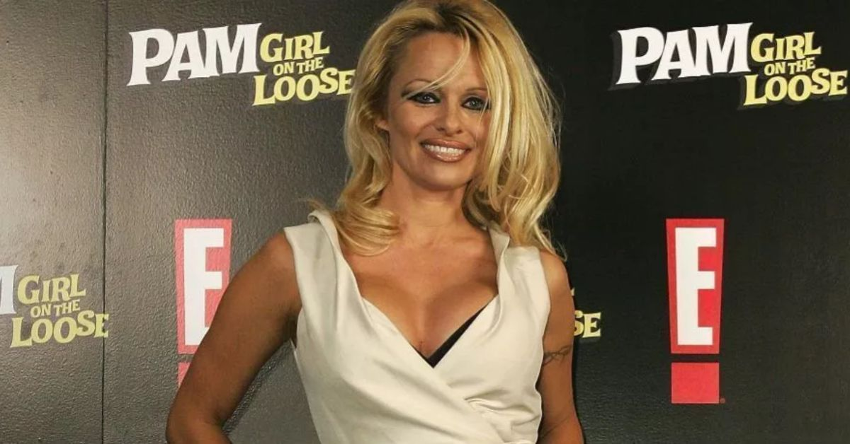 DndkQ3JvU1ZxMGxycTRKdFppOHQuanBn Pamela Anderson Hangs In Triangle Bikini By A Highway 8211 The Blast
