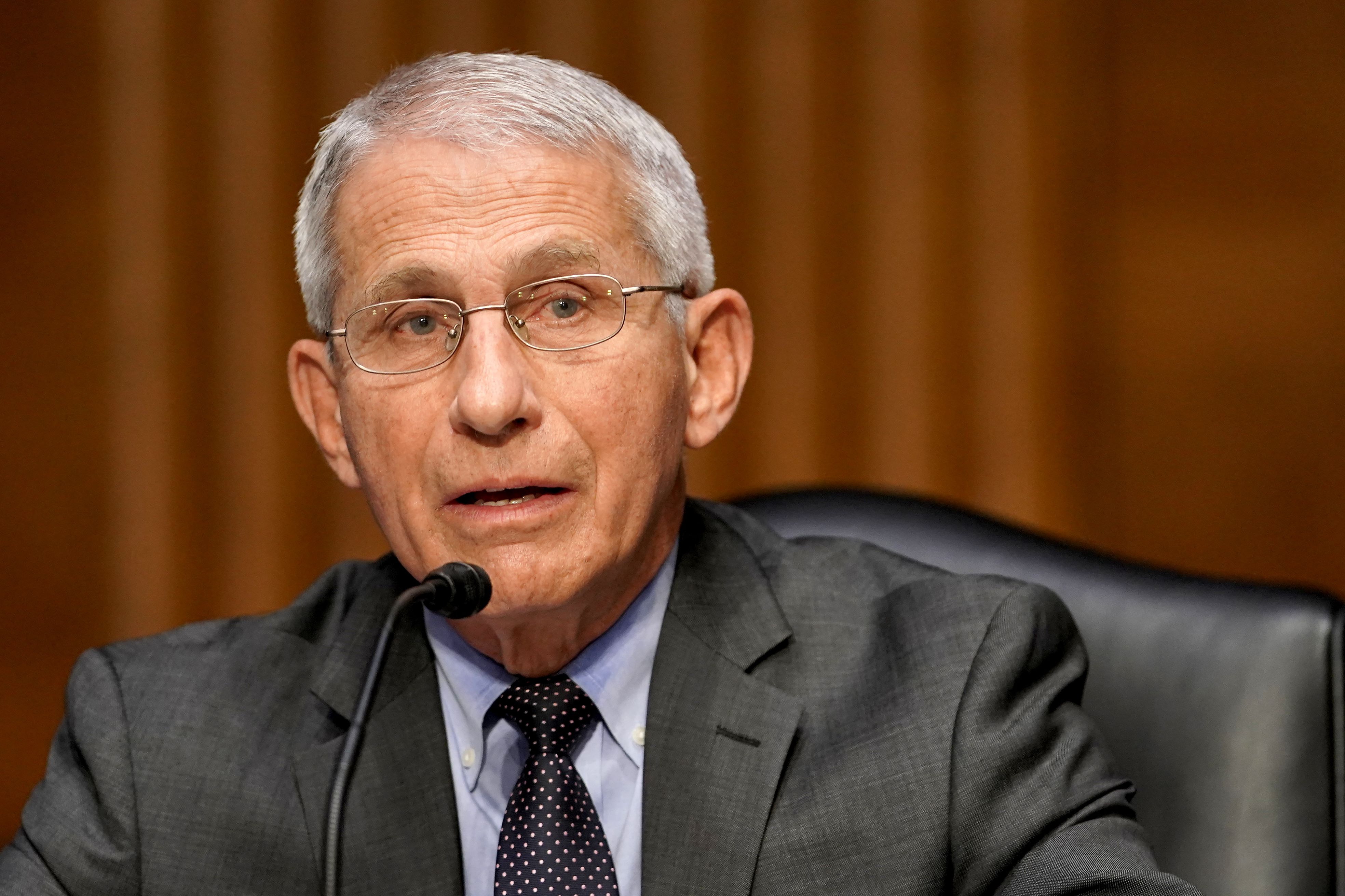 Anthony Fauci speaks at an event.