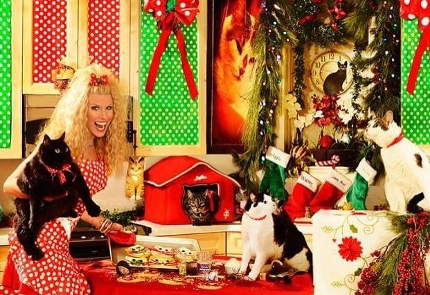 Crazy Cat Lady Christmas Card